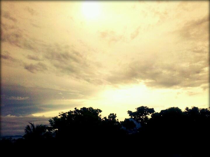 #sunset #darkforest #silhouette