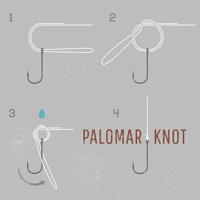 how to bass fishing palomar knot