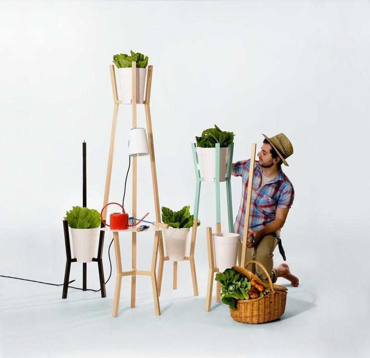 éénheid in dit framework voor planten nabij het raam (Pieni Mopo)