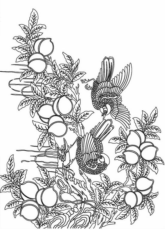 birds on peach tree adult coloring pages - Advanced Coloring Pages 2