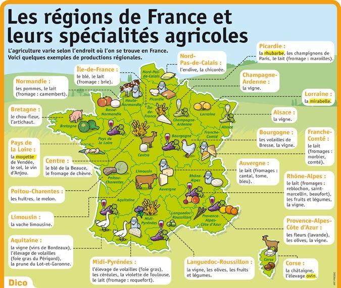 Les régions de France et leurs spécialités agricoles