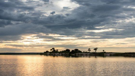 Discover the unique beauty of a Chobe River safari in the green season with the Zambezi Queen Collection.  #zambeziqueen #choberiver #chobesafari