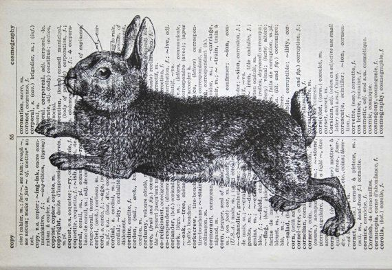 Rabbit Print on Vintage French English Dictionary 5 x by CrowBiz
