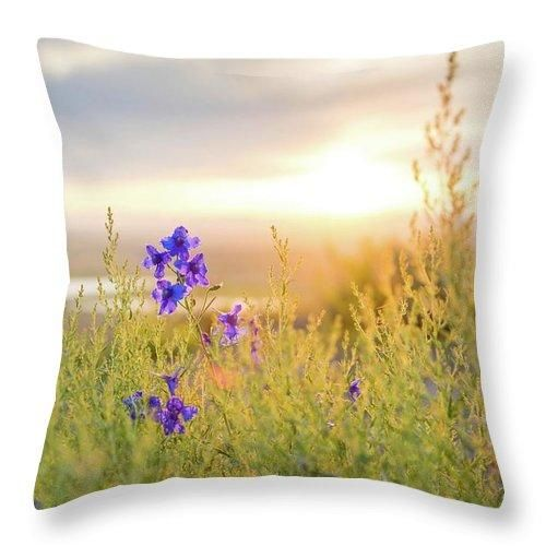 Beauty Cloudy Daytime Field Floral Flower Flowers Glow Gold Goldenhour Grass Green Macro Nature Gold Throw Pillows Green And Gold Throw Pillows