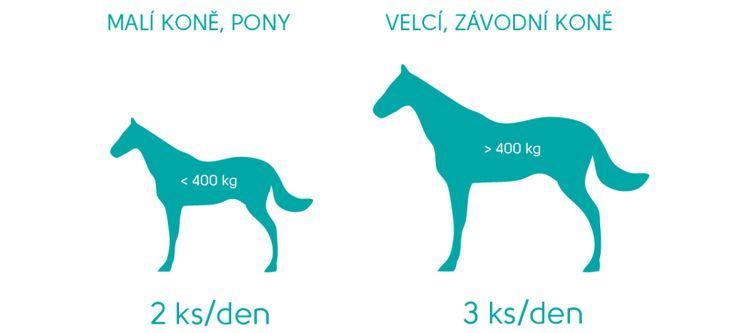 Geloren kloubní výživa nejen pro koně