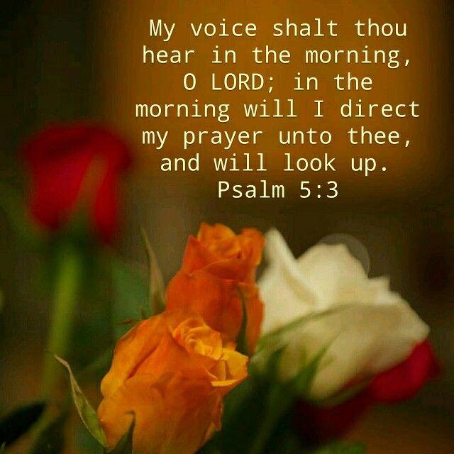 Psalm 5:3 KJV