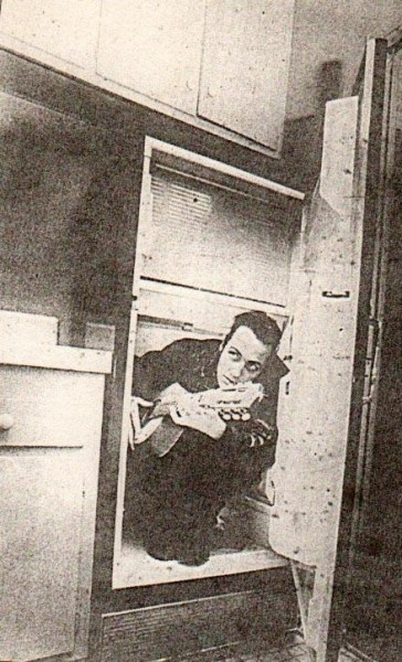 Joe Strummer in a fridge your argument is invalid
