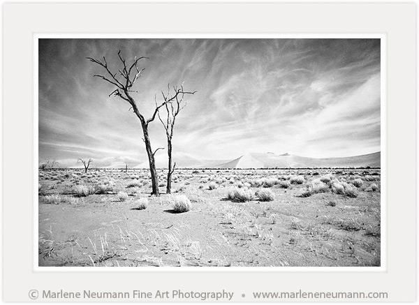 Desertscape black and white fine art photography by south african master photographer marlene