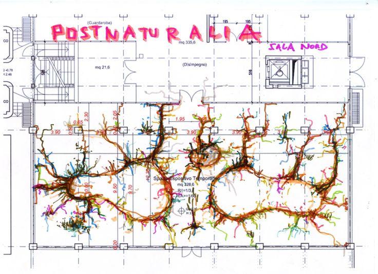 #workinprogress  Krištof Kintera | Postnaturalia dal 19 marzo  La Natura è paragonata dall'artista a un enorme sistema nervoso ed è anche per questa ragione che il suo progetto si innesterà in diversi spazi della #CollezioneMaramotti come in un complesso organismo vivente...  #danonperdere