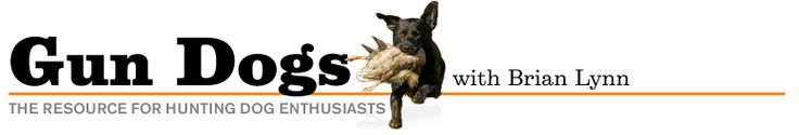 Gun Dog Training: Introducing Your Pup to Water, Game, and Gunfire   Outdoor Life