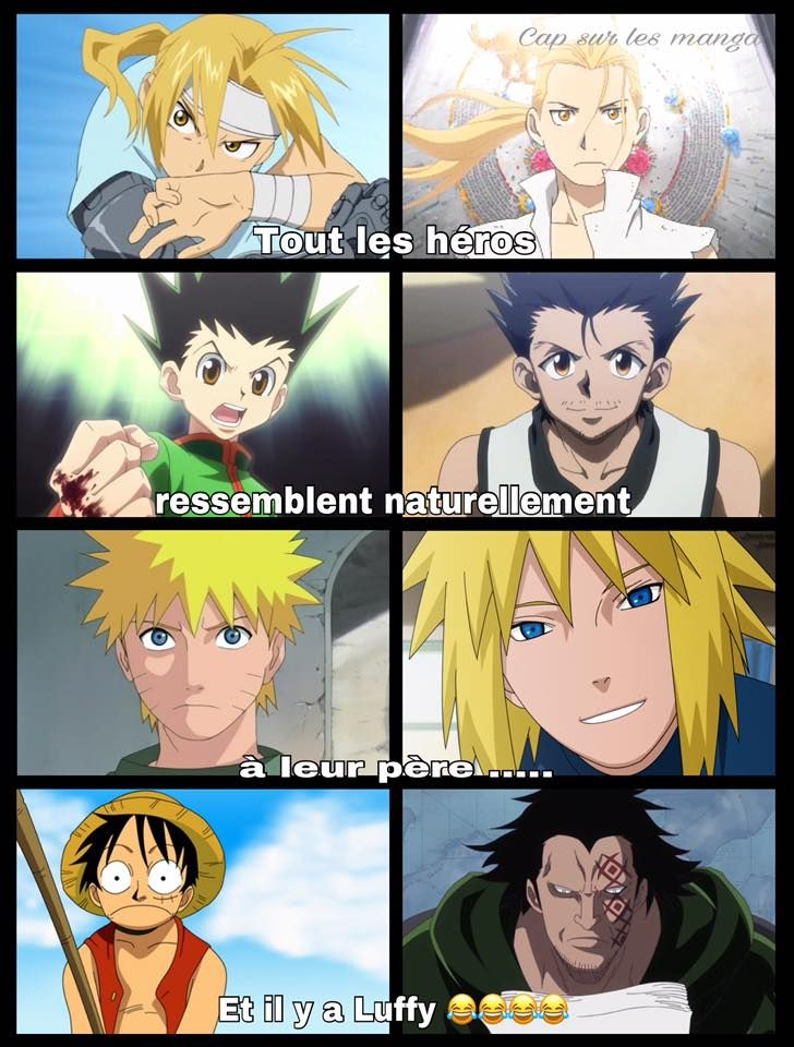 All the heroes looks like their father ... and there is luffy