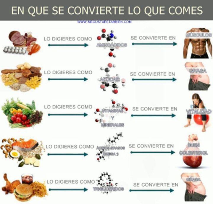 En qué se convierte lo que comes #alimentatubienestar