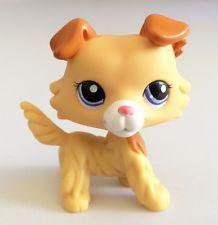 Littlest Pet Shop Collection LPS Figure Animals Golden Collie Dog Rare On Sale