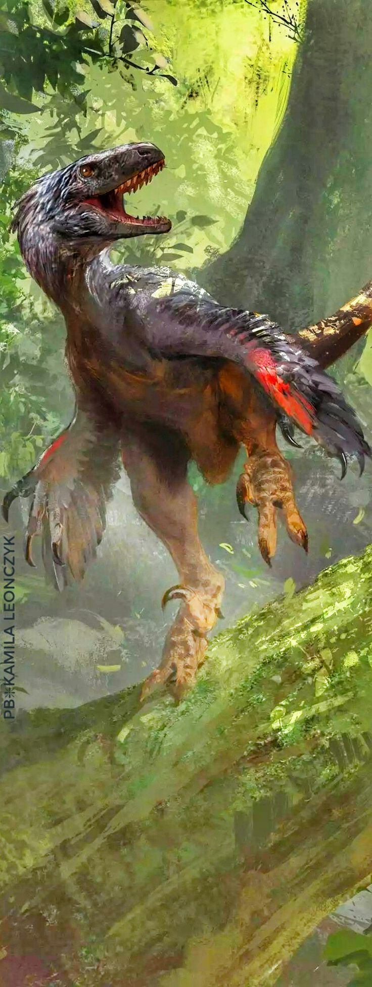 """Atrociraptor(meaning """"savage robber"""") is agenusofdromaeosauridtheropoddinosaurfrom theLate Cretaceous(Maastrichtianstage) ofAlberta,Canada.Thetype(and only) specimen ofAtrociraptor,holotypeRTMP 95.166.1, was discovered by Wayne Marshall in 1995, in layers of theHorseshoe Canyon Formationalso containing anAlbertosaurusbonebed, nearDrumheller - Atrociraptor by Jonathan Kuo"""