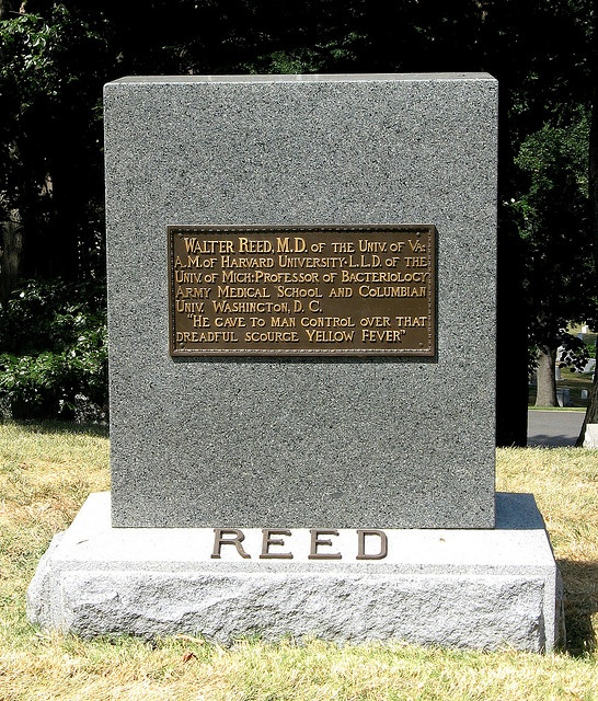 Walter Reed Headstone at Arlington Cemetery