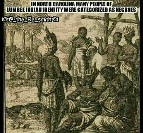 Many Indians were classified as negro to take away the true identity, Native American by blood and a cilvilization of different cultures belonging to various tribes. Pinterest @sweetness