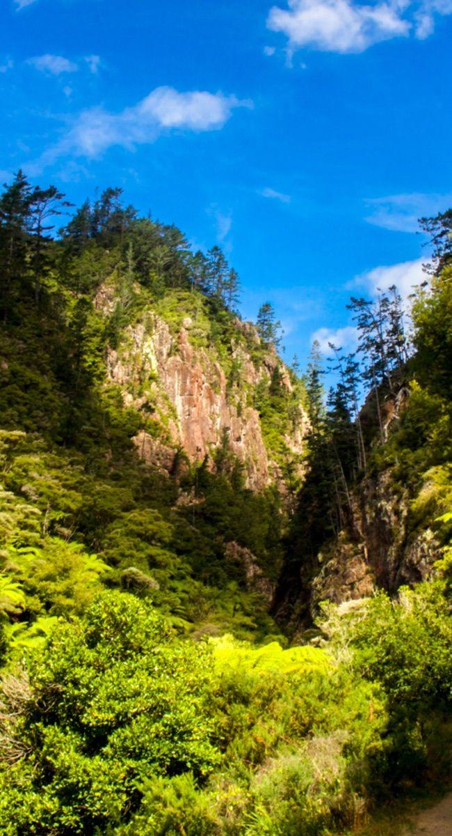 Karangahake Gorge Walkway, New Zealand