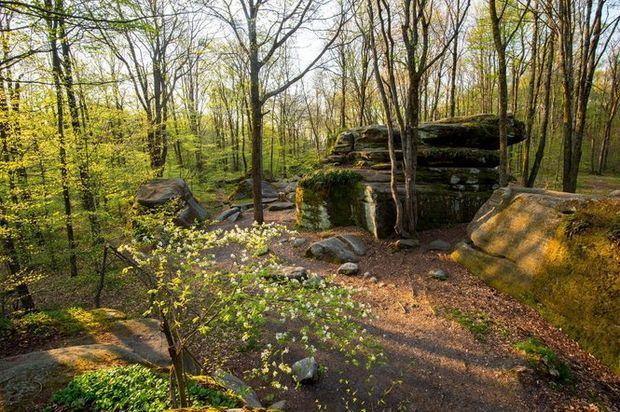 Looking for a challenging day hike? Check out 9 great hikes to enjoy the outdoors in Upstate NY