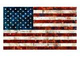 Amerikaanse vlag Gicléedruk van Stella Bradley