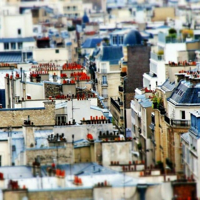 """ What is the victory of a cat on a hot tin roof?—I wish I knew... Just staying on it, I guess, as long as she can... Tennessee Williams, Cat on a Hot Tin Roof  #series #selectivefocus #parisphoto #postprocessing #tiltshift #tiltshiftparisseries #tiltshiftparis #effect #miniature #cestmonparis #casioexf1 #parisjetaime"