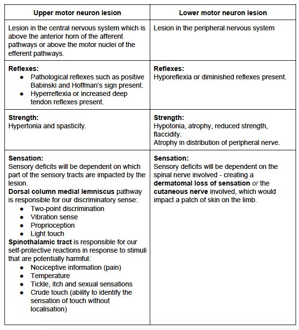 Sensation Testing - Peripheral Nerve Lesion — Rayner ...