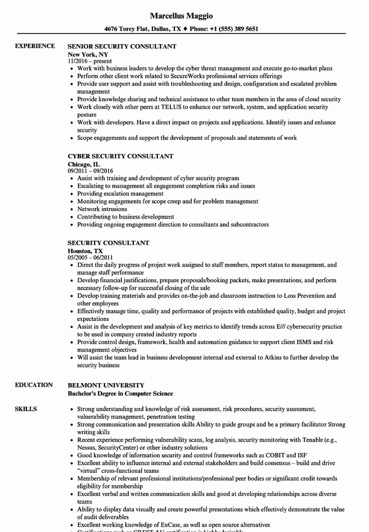 Information technology consultant resume new security