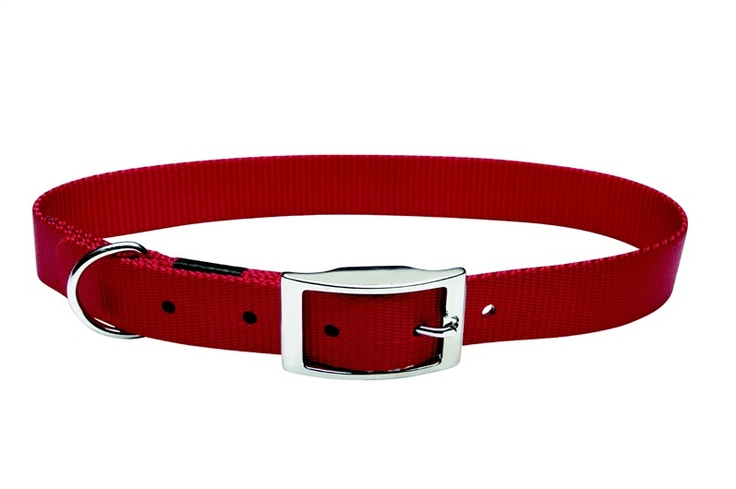"""Dogit Single Ply Nylon Dog Collar with Buckle- Red, Medium (36cm/14"""") - Product # D0020"""