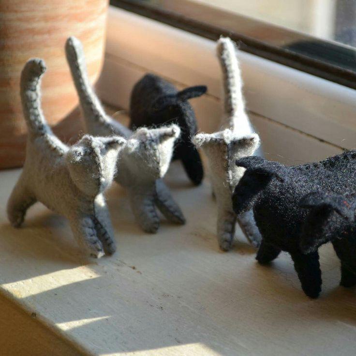 Grey cats in my atelier :)