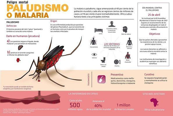 Malaria.-Síntomas de malaria: Anemia. Convulsiones. Fiebre. Dolor de cabeza. Dolores musculares. Heces con sangre. Defectos en la coagulación sanguínea. Tos. Vómitos. Insuficiencia renal.