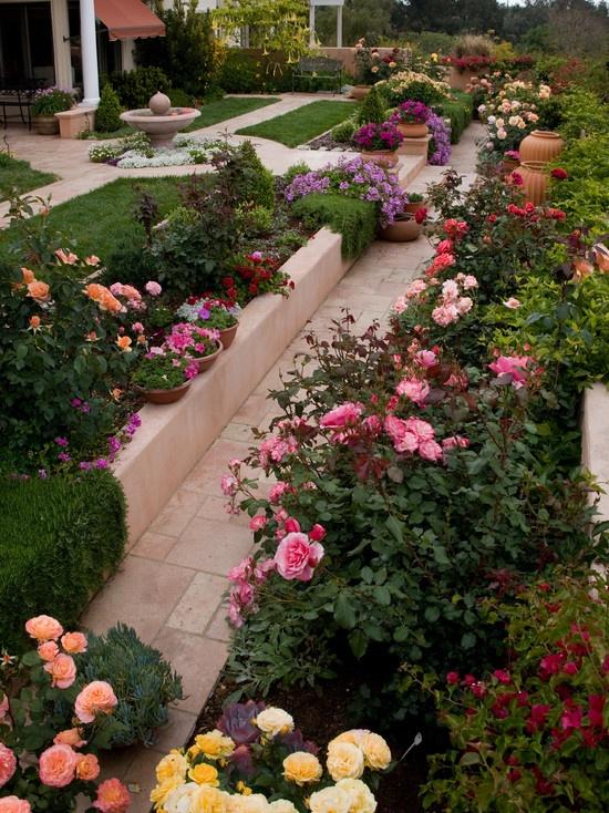 Formal Cottage Garden Of Roses.