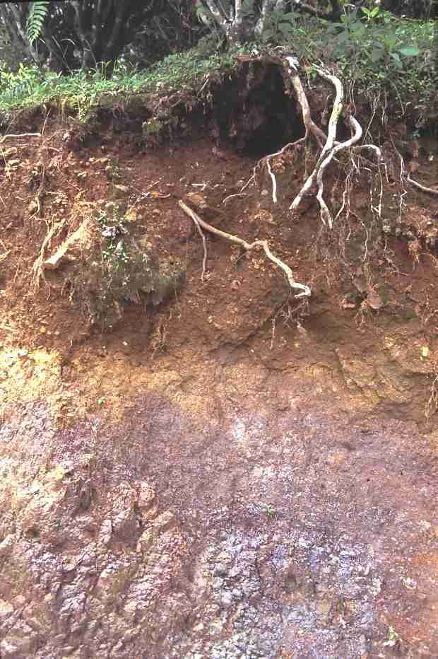 21 best soils around the world images on pinterest earth for Soil and geology