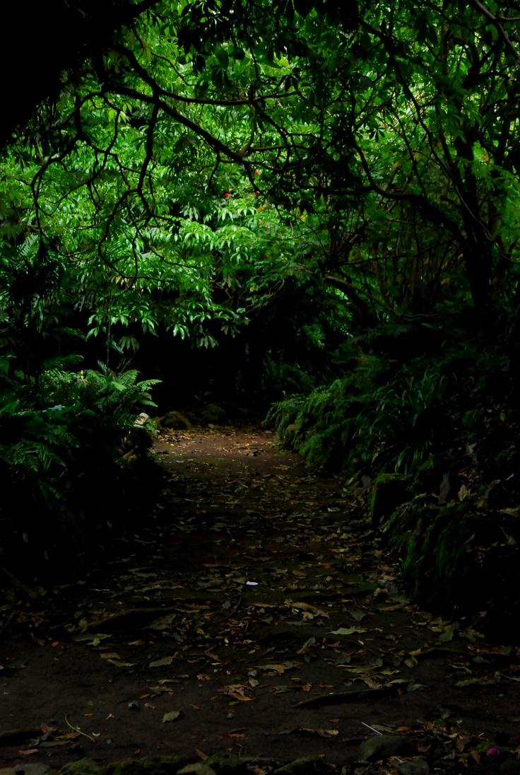 Cerro verde / El Salvador  by Jennvelaz