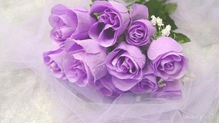 Pin Oleh Septia Di Yang Saya Simpan Mawar Ungu Bunga Cantik Gambar Bunga