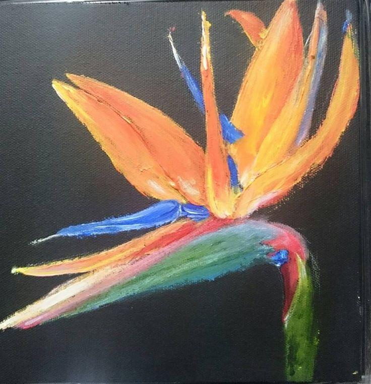 Bird of paradise/strelitzia 2