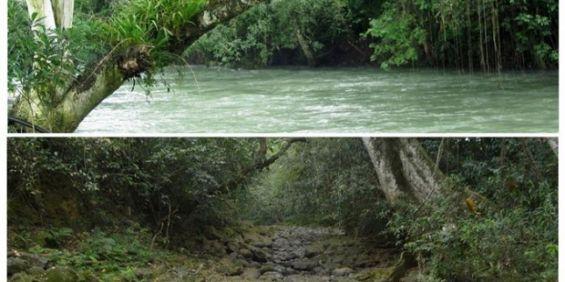 México: Un río desapareció de un día para el otro - http://verdenoticias.org/index.php/blog-noticias-medio-ambiente/112-mexico-un-rio-desaparecio-de-un-dia-para-el-otro