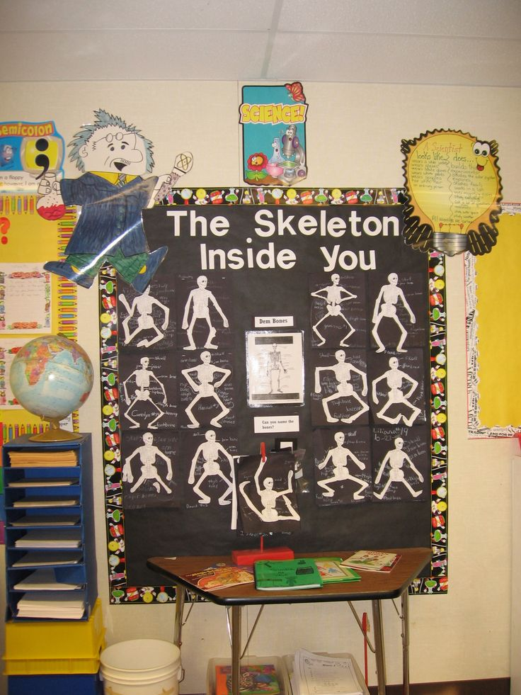 Quot The Skeleton Inside You Quot Bulletin Board Idea Great For