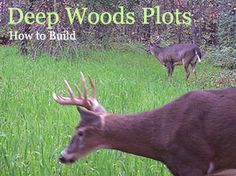 For building food plots within pines and hardwoods