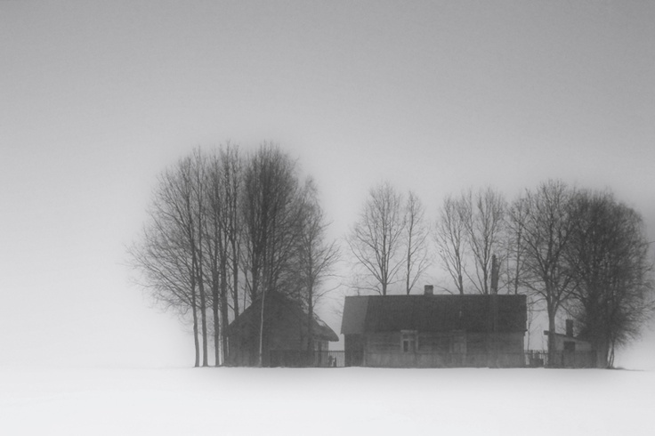 by Beata ZdanowskaRain Snow, Fog Rain, Visual Stuff, Snow Frostings, Beata Zdanowska