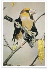 rock chick - Premium Poster