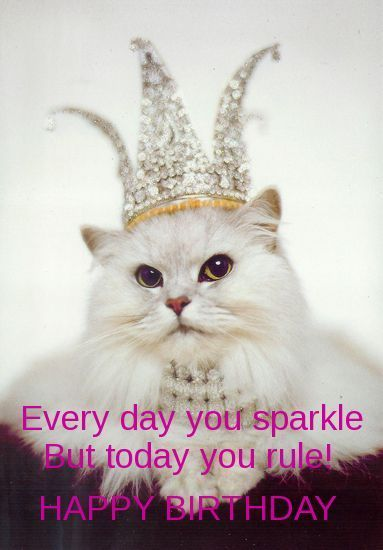 Every day you sparkle. But today you rule! Happy birthday