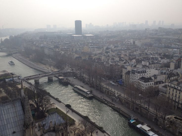 View from the top of Notre-Dame