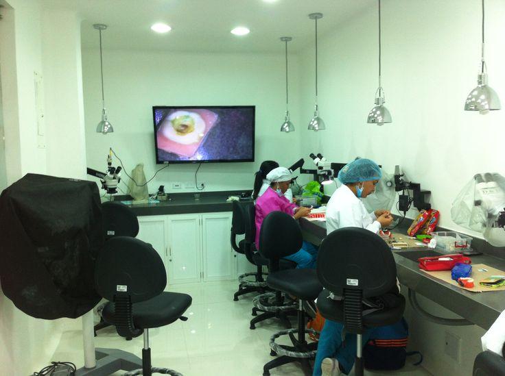 Estudiantes de la Especialización en Endodoncia en el Laboratorio