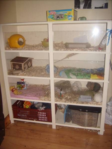 Shelf Cage with plexiglas that slides out for cleaning