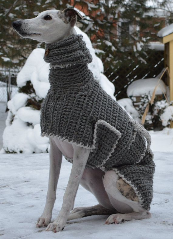 Knitting Patterns For Greyhound Dogs : Greyhound Sweater - Greyhound Coat - Greyhound Jumper - Sighthound Coat - Lar...
