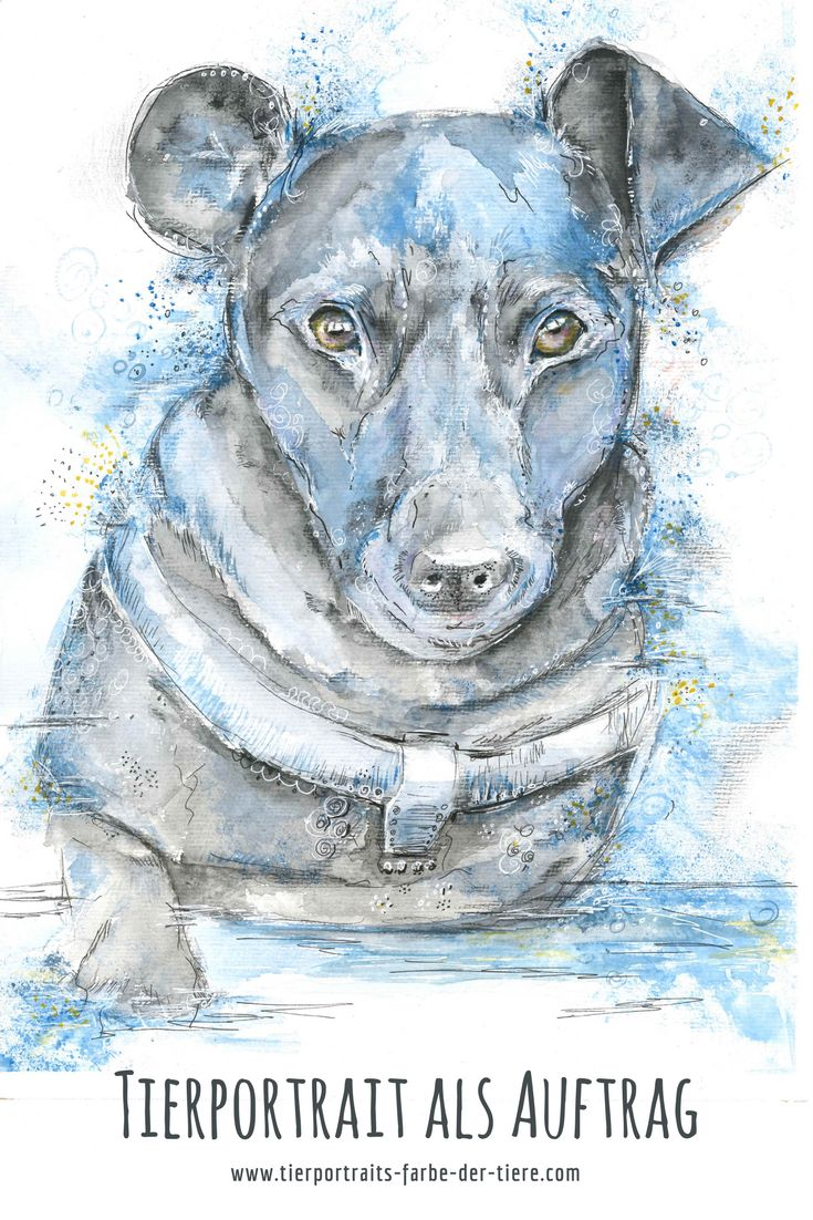 dein hund als buntes aquarell malen lassen  als