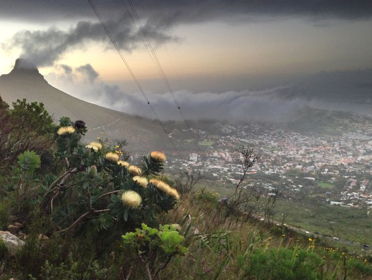 Stormy day on Table Mountain, Cape Town, South Africa. (Photo A. Jacobsen)
