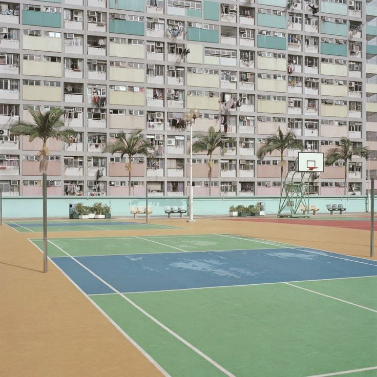 Desolation on sporting courts | Ward Roberts