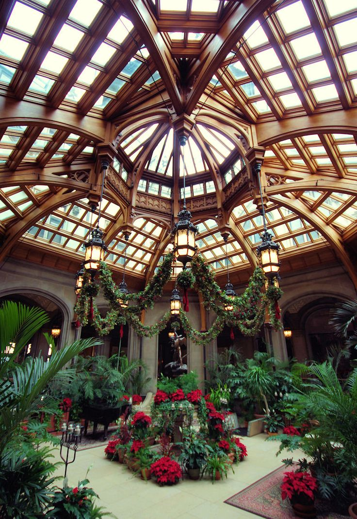 Winter Garden inside Biltmore House Asheville, NC with Christmas decorations