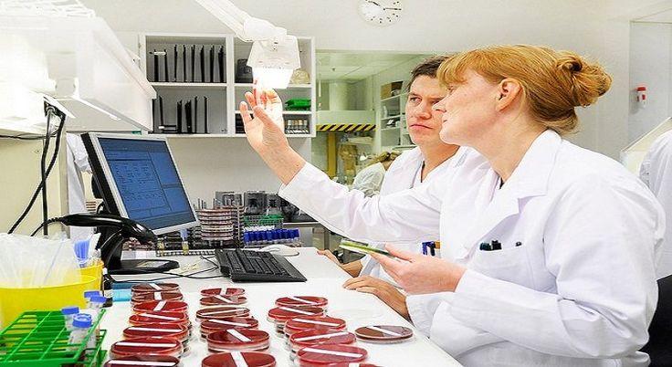 Prospek Kerja Lulusan Mikrobiologi