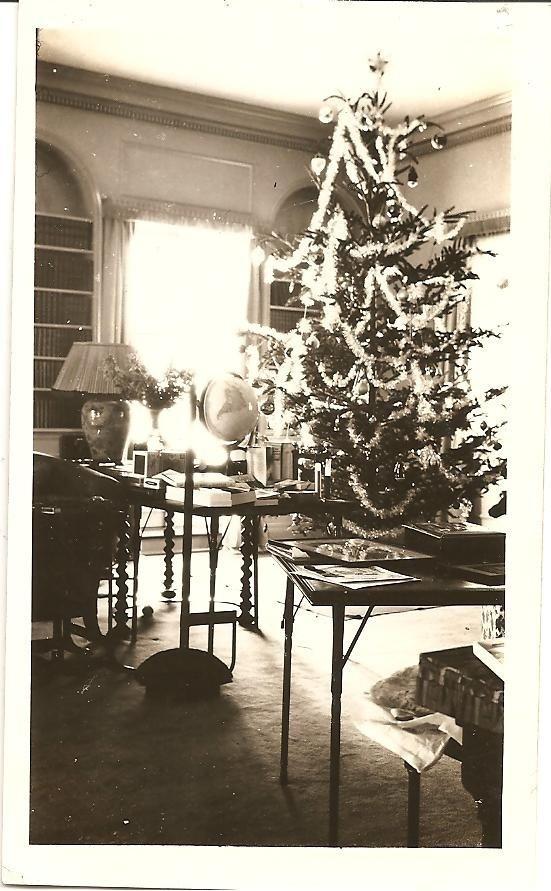 christmas time 1920s - Ebay Christmas Trees